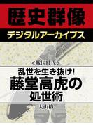 <戦国時代>乱世を生き抜け! 藤堂高虎の処世術(歴史群像デジタルアーカイブス)
