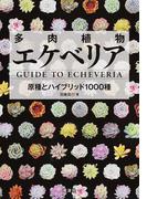 多肉植物エケベリア 原種とハイブリッド1000種
