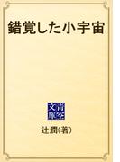 錯覚した小宇宙(青空文庫)