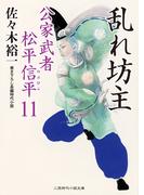 乱れ坊主(二見時代小説文庫)