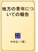 地方の青年についての報告(青空文庫)