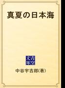 真夏の日本海(青空文庫)