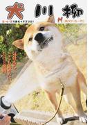 犬川柳 五・七・五で詠むイヌゴコロ! 柴犬バカ一代 とことんまで極めよ、犬バカ道!