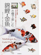 水槽で楽しむ錦鯉・金魚 横から鑑賞。日本の伝統魚の新しい飼育スタイル