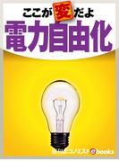 ここが変だよ電力自由化(週刊エコノミストebooks)