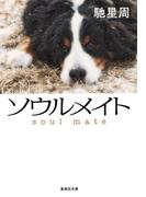 ソウルメイト(集英社文庫)
