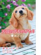 小学館ジュニア文庫 天国の犬ものがたり~夢のバトン~(小学館ジュニア文庫)