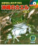 沖縄のカエル 生態写真と鳴き声で知る 全20種 (沖縄の自然シリーズ)