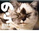 岩合光昭 2017カレンダー のら (カレンダー)