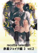 recottia selection 赤星ジェイク編3 vol.2(B's-LOVEY COMICS)