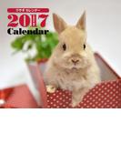 2017年ミニカレンダー ウサギ