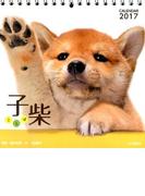 子柴 (2017年カレンダー)
