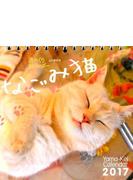 週めくりカレンダー なごみ猫