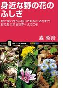 身近な野の花のふしぎ(サイエンス・アイ新書)