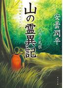 山の霊異記 幻惑の尾根(角川文庫)