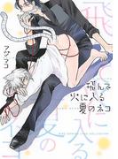 飛んで火に入る夏のネコ(4)(バーズコミックス リンクスコレクション)