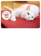 【期間限定価格】ねこ禅 人生がふニャっとなごむ50の教え(単行本(KADOKAWA / 角川マガジンズ))