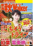 東海秋Walker2016(ウォーカームック)