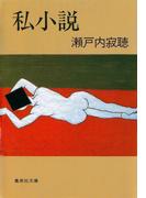 私小説(集英社文庫)