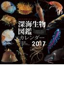 深海生物図鑑 (2017年版カレンダー)