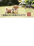 卓上 和風総本家豆助 (2017年版カレンダー)