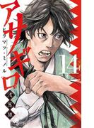 アサギロ~浅葱狼~ 14(ゲッサン少年サンデーコミックス)