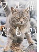 ワル猫だもの (SUN−MAGAZINE MOOK)(SUN-MAGAZINE MOOK)