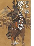 夢のまた夢(二)(幻冬舎時代小説文庫)