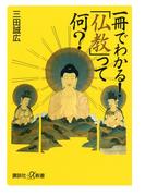 一冊でわかる! 「仏教」って何?(講談社+α新書)