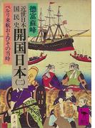 近世日本国民史 開国日本(二) ペルリ来航およびその当時(講談社学術文庫)