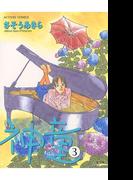 【期間限定価格】神童 3