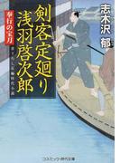 剣客定廻り浅羽啓次郎 書下ろし長編時代小説 3 奉行の宝刀