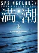【全1-2セット】満潮(創元推理文庫)