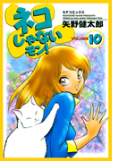 ネコじゃないモン!(10)