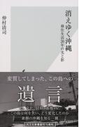 消えゆく沖縄 移住生活20年の光と影 (光文社新書)(光文社新書)