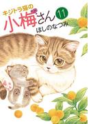 【11-15セット】キジトラ猫の小梅さん(ねこぱんちコミックス)