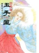 陰陽師 玉手匣(6)(ジェッツコミックス)