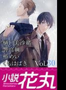 小説花丸 Vol.30(小説花丸)