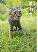 里山の子、さっちゃん 全身マヒの猫「サチ」と仲間たち
