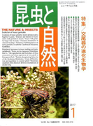 昆虫と自然 2017年 01月号 [雑誌]