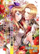 大逃亡~女騎士の恋の受難~(TL◆蜜姫文庫チュチュ)