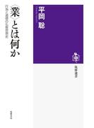 〈業〉とは何か ──行為と道徳の仏教思想史(筑摩選書)