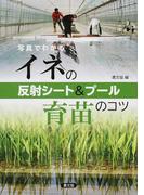 写真でわかるイネの反射シート&プール育苗のコツ