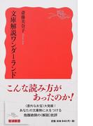 文庫解説ワンダーランド (岩波新書 新赤版)(岩波新書 新赤版)