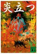 炎立つ 四 冥き稲妻(講談社文庫)