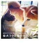 柴犬フクと猫のタラ。