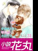 小説花丸 Vol.31(小説花丸)