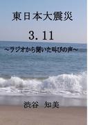【オンデマンドブック】ヒロエンタープライズシリーズ 東日本大震災 3.11