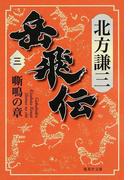 岳飛伝 3 嘶鳴の章 (集英社文庫)(集英社文庫)