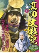 真田大戦記 五 下 小田原城の死闘